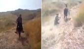 بالفيديو.. حمار يسحل رجلا بسبب كلب