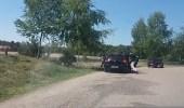 بالفيديو.. مجموعة فهود تهاجم عائلة تركت سيارتها في رحلة سفاري