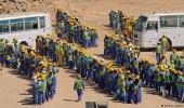""""""" نظام الحمدين """" يقهر العمالة الأجنبية"""