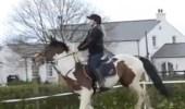 بالفيديو.. سقوط مروع لفتاة من على ظهر حصان