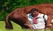 بالفيديو.. رجل يحمل حصانا على كتفه ويسير به