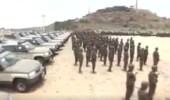 بالفيديو.. احترافية القوة الأمنية في مطاردة المجرمين وحماية الحدود بالحد الجنوبي