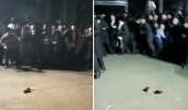 بالفيديو.. فأر يرعب جمعا غفيرا من اليهود ويخرب احتفالهم