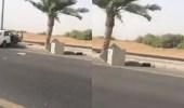 """بالفيديو .. سيارة تقتلع كاميرا """" ساهر"""" بطريق صبيا بجازان"""