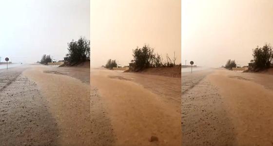 بالفيديو.. أمطار الخير تكسو شوارع القصيم