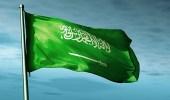 المملكة تدعو لتشكيل لجنة دولية للتحقيق في أحداث غزة