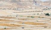 """برنامج """" سكني """" يطرح 22 ألف قطعة أرض مجانية في عسير"""