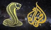 """سقطات """" الجزيرة """" الإعلامية تستمر في سبيل خدمة الأجندات المشبوهة"""