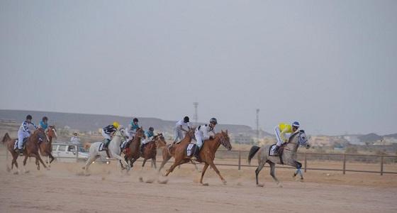 انطلاق سباق السرعة للخيل العربية الأصيلة على كأس إمارة الباحة غدا