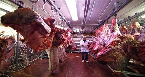 شركة روسية تدخل سوق اللحوم الخليجية من المملكة