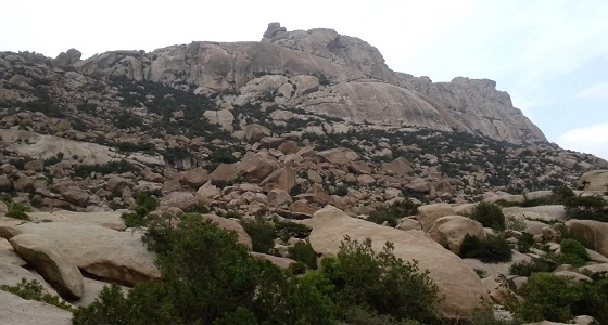 """على خطى الأجداد.. شباب يسلكون الطريق الجبلي لصعود جبل """" إبراهيم """""""