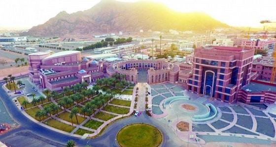 جامعة طيبة تعلن عن وظائف شاغرة