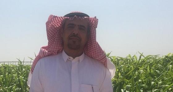 لجنة مختصة تباشر هجوم جراد على مزرعة مواطن بحائل