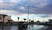 أمطار على مراكز محافظة أملج الشرقية