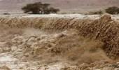 مصرع 7 أشخاص وفقدان 44 آخريين في سيول البحر الميت