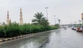 أمطار على منطقة الحدود الشمالية