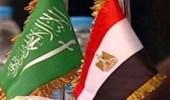 مصر ترحب بعزم المملكة المضي قدما فى تعزيز وحماية حقوق الإنسان