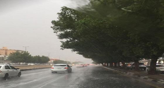 بالفيديو.. توقعات الأرصاد لطقس الغد ببعض مناطق الممكلة