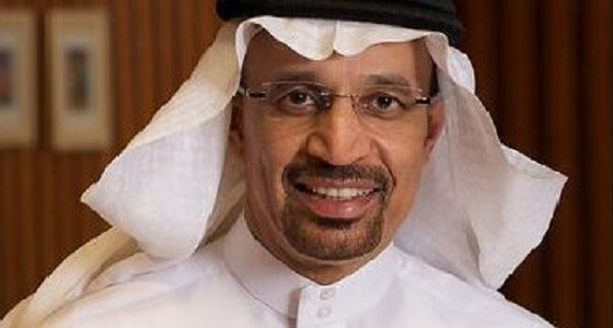 وزير الطاقة يناقش أوضاع السوق البترولية مع رئيس الوفد الليبي في أوبك