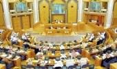 اتهامات بالشورى لوزارة الاتصالات بالتقصير في مواجهة عصابات الاحتيال المالي