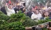 بالفيديو.. أنجيلا ميركل تتجول في أسواق الخضار