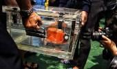 العثور على الصندوق الأسود الثاني للطائرة الإندونيسية المنكوبة