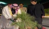 سر الشجرة التي زرعها ولي العهد في القصر الرئاسي خلال زيارته لباكستان