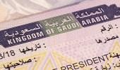 لأول مرة.. إصدار 9 آلاف تأشيرة إلكترونية سياحية