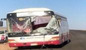 اصطدام حافلة تقل طالبات جامعيات بجمل سائب في عفيف