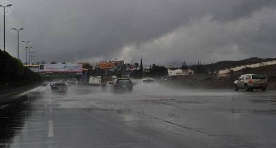 تنبيه.. استمرار هطول أمطار رعدية على 3 مناطق