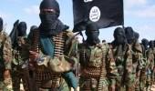 غارة جوية تقتل الرجل الثاني في داعش