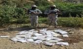 """رجال حرس الحدود بمنطقتي جازان ونجران يحبطون محاولات تهريب """" طن و300كيلو """"من الحشيش"""