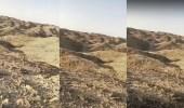 بالفيديو.. العثور على جثة شاب مفقود بالدوادمي بعد 6 أيام