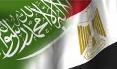 مصر تؤكد وقوفها حكومةً وشعبًا إلى جانب المملكة ضد محاولات النيل منها