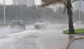 هطول أمطار ونشاط في الرياح بالجوف