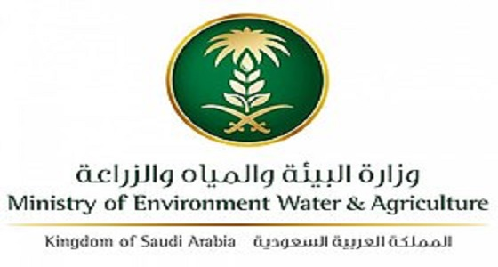 موعد إجراء المقابلات الشخصية لوظائف وزارة البيئة