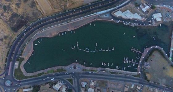 « البيئة » تحتفيباليوم الوطني بالقوارب البحرية في ضباء