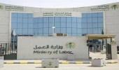 وزارة العمل تودع 2 مليار ريال لمستفيدي الضمان الاجتماعي لشهر محرم