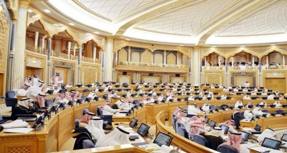 « الشورى » يوافق على إعادة هيكلة تأشيرات الزيارة والحج والمرور