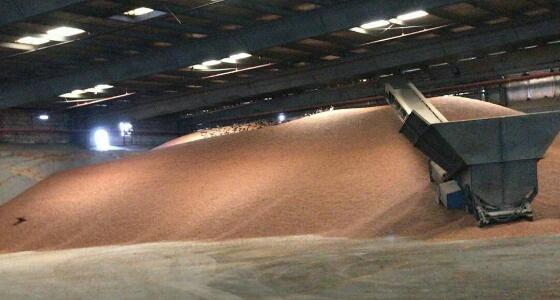 بالصور.. الغذاء والدواء تغلق مستودع أغذية بجدة بسبب سوء التخزين