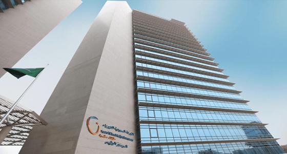 إطلاق خدمة «برق» في الباحة لإيصال الكهرباء للمشتركين الجُدد خلال 9 أيام