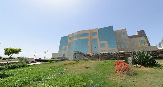 جامعة الملك خالد تنظم ورشة « برامج رؤية المملكة وبناء المبادرات النوعية » غدًا
