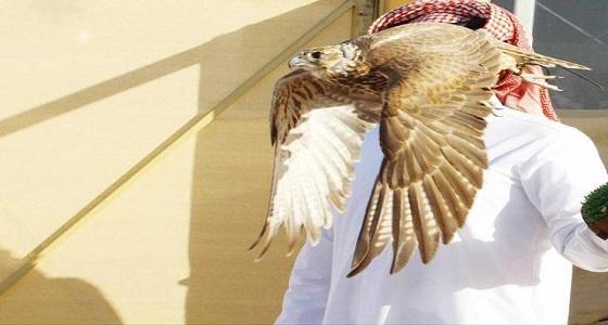 حساب آل سعود يرد على فيديو لشخص قُدم على أنه «أمير» بمعرض الصقور