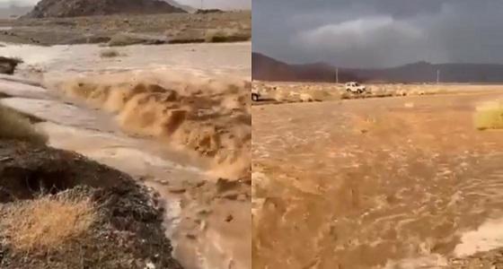 مشهد مُهيب لجريان المياه في سيل البلاطة بـ« العلا » (فيديو)