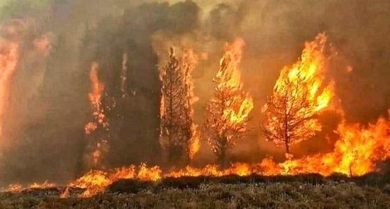 تفاصيل مفجعة لآخر لحظات ضحية حرائق لبنان .. هبّ لإنقاذ البلدة ورحل