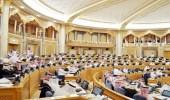 توصية بالشورى تطالب بوزارة مستقلة للتعليم العالي