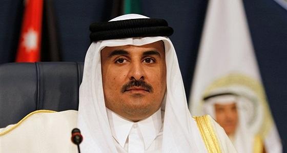 فضيحة جديدة للحمدين.. حقيبة دبلوماسية قطرية تدعم الحوثيين بالملايين