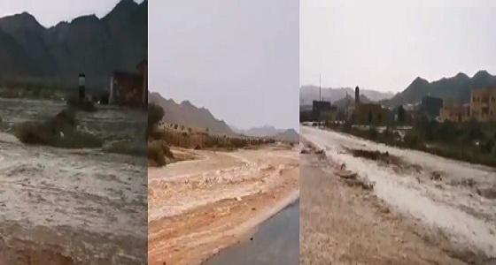 بالفيديو.. سيول البرزة شمال مكة المكرمة