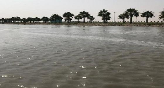 بالفيديو.. فصل التيار الكهربائي عن أعمدة الكهرباء بشاطئ العقير بعد ارتفاع منسوب البحر