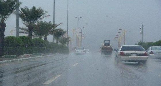 أمطار رعدية ورياح نشطة تسود أجواء عسير